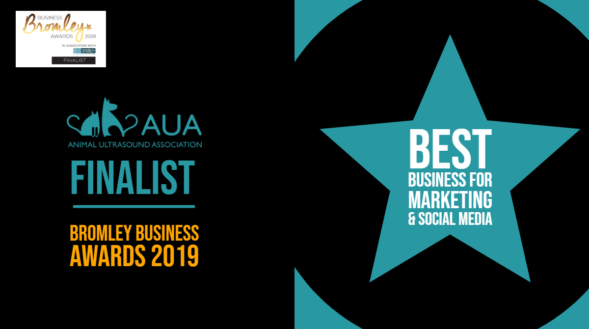 Best Business for Marketing & Social Media Finalist